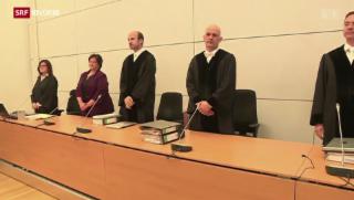 Video «Dreieinhalb Jahre Gefängnis» abspielen