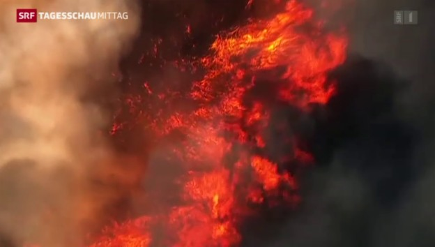 Video «Brände in Kalifornien ausser Kontrolle» abspielen