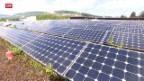 Video «Solarpannels vs. Grünflächen» abspielen