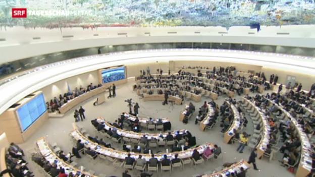 Video «Verbrechen in Syrien sollen vor ICC» abspielen