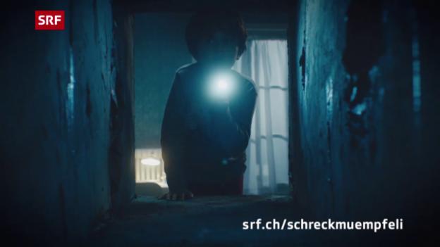 Video «Trailer: 40 Jahre Schreckmümpfeli» abspielen