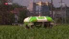 Video «Roboter auf dem Feld» abspielen