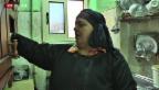 Video «Aus Armut im Gefängnis» abspielen