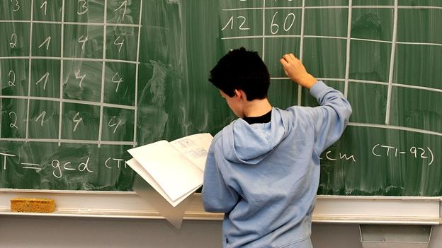 Studenten knobeln an PISA-Aufgaben