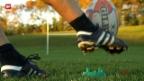 Video «Wie kam der Rugby-Ball zu seiner ovalen Form? («sportlounge»)» abspielen