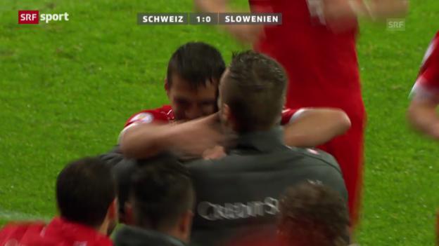 Video «Fussball: Zusammenfassung Schweiz - Slowenien («sportaktuell»)» abspielen
