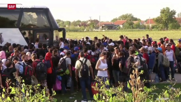Video «Kroatien an der Grenze seiner Möglichkeiten» abspielen