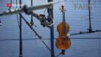 Video «Stradivari-Klang dank Pilzbehandlung?» abspielen