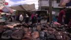 Video «FOKUS: Aktuelle Situation in Gaza» abspielen