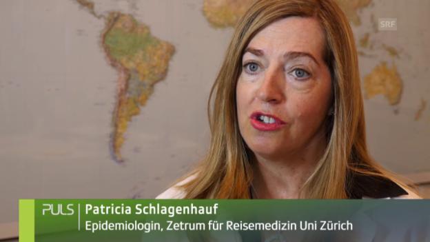 Video «Ausbreitung der Mückenarten und deren Folgen» abspielen