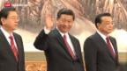 Video «Xi Jinping vier Monate im Amt» abspielen