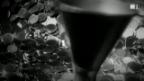 Video ««ECO kompakt»: Silber-Franken» abspielen