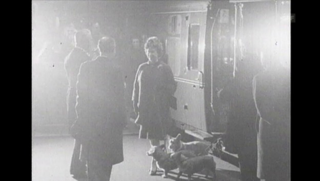 Video «1969 nahm Elizabeth die Corgis gar zu einem Empfang mit» abspielen