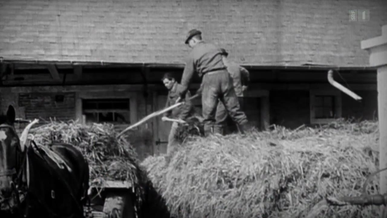 Serie «Vor 50 Jahren»: Das grosse Bauernsterben