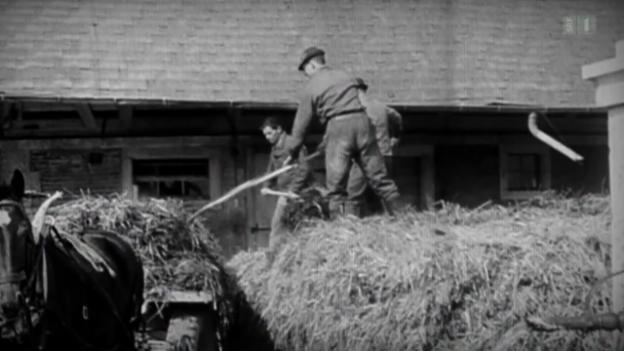 Video «Serie «Vor 50 Jahren»: Das grosse Bauernsterben» abspielen