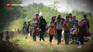 Video «CDU-Basis soll über den UNO-Migrationspakt entscheiden» abspielen