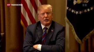 Video «Trump kündigt baldige Entscheidung zu Syrien an» abspielen