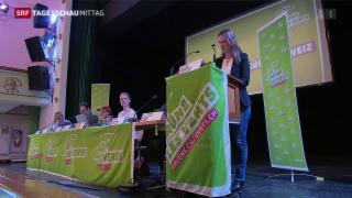 Video «Die Grünen auf der Suche nach Antworten» abspielen