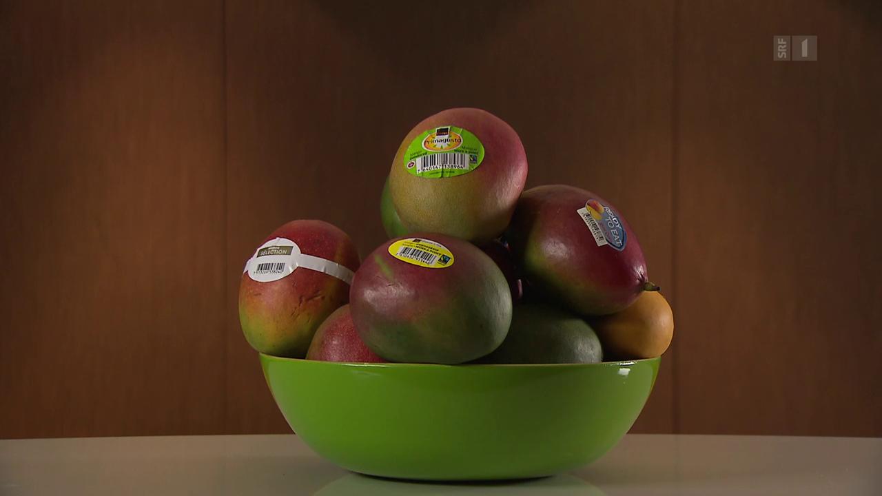 Mango-Schwemme: Süsse Frucht mit bitterem Nachgeschmack