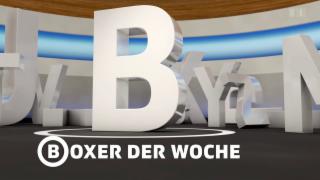 Video «B wie Boxer der Woche» abspielen