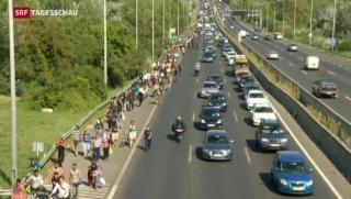 Video «Flüchtlinge rebellieren in Ungarn» abspielen