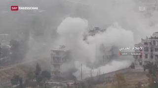 Video «Ausweglose Situation in Aleppo» abspielen