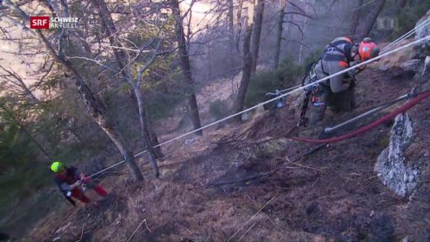 Video «Kampf gegen Waldbrand» abspielen