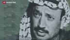 Video «Wurde Arafat vergiftet?» abspielen