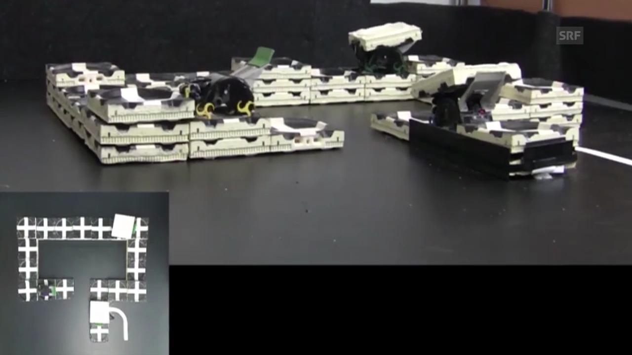 Drei Roboter errichten eine Struktur (Science/AAAS)