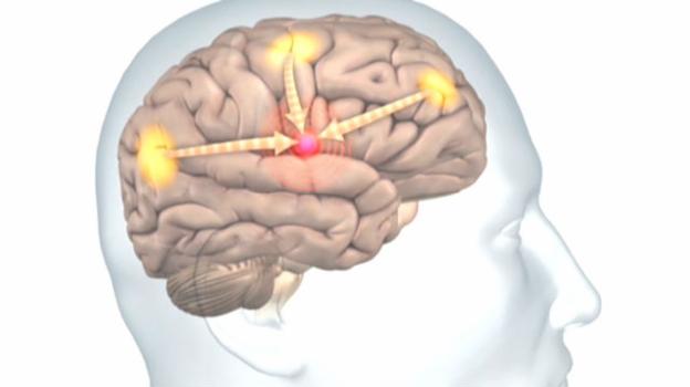 Video «Neue Tinnitus-Therapien» abspielen