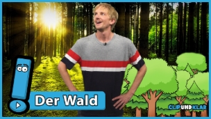 Video «Die wichtigen Aufgaben des Waldes» abspielen