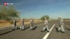 Video «10vor10 Sommerserie: Der unerbittlichste Sheriff Amerikas» abspielen
