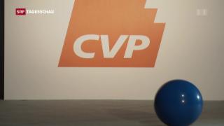 Video «FDP zur Europapolitik» abspielen