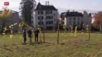 Video «Streit um Rebberg» abspielen
