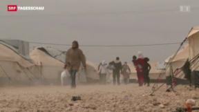 Video «Syrische Flüchtlinge in der Schweiz» abspielen