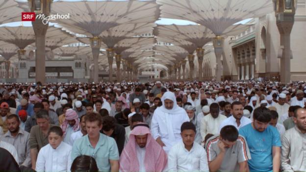 Video «Das Mekka-Business – Pilgern zwischen Glauben und Geld» abspielen