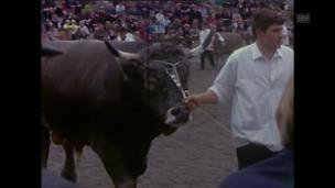 Video «OLMA (1968)» abspielen