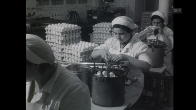 Video «Beruf Eier-Aufschlägerin (1970)» abspielen