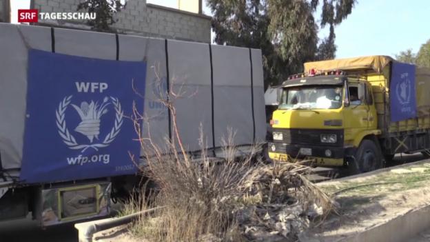 Video «Hilfskonvoi für Syrien» abspielen