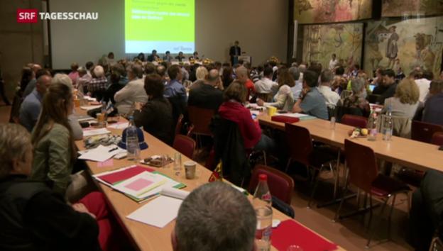 Video «Neue Leitlinien für die Grünliberalen» abspielen