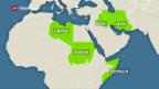 Video «Trump schliesst Grenzen für muslimische Flüchtlinge» abspielen
