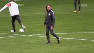 Video «Wolfsburg installiert Schmidt als Cheftrainer» abspielen