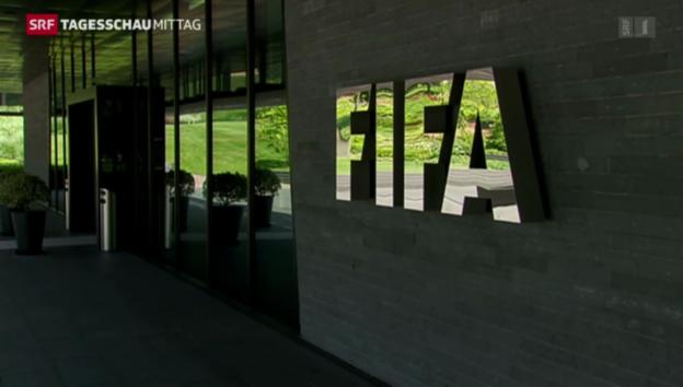 Video «Katar-WM in der Kritik» abspielen