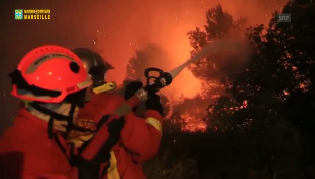 Video «Waldbrände in Südfrankreich (unkommentiert)» abspielen