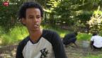 Video «Minderjährige auf der Flucht» abspielen