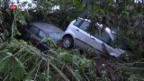 Video «Viele Todesopfer nach Unwetter» abspielen