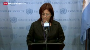 Video «UN-Sicherheitsrat verurteilt Gewalt in Ägypten» abspielen