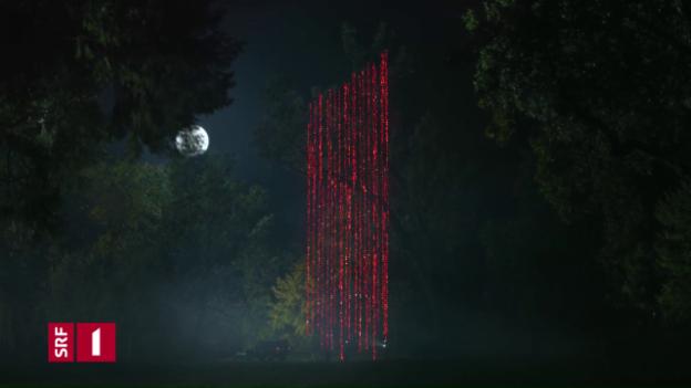 Video «Station Ident SRF 1: Baum» abspielen