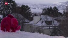 Video «Der rosa «Elefant» von Martin Suter» abspielen