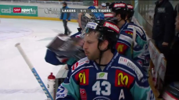 Video «Eishockey: Lakers - SCL Tigers («sportaktuell»)» abspielen